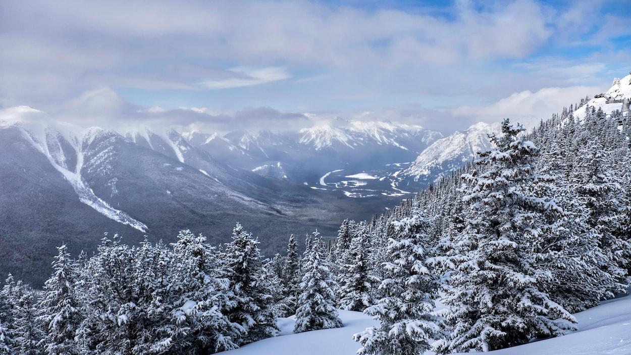 Vu en plongée du parc national de Banff en Alberta.