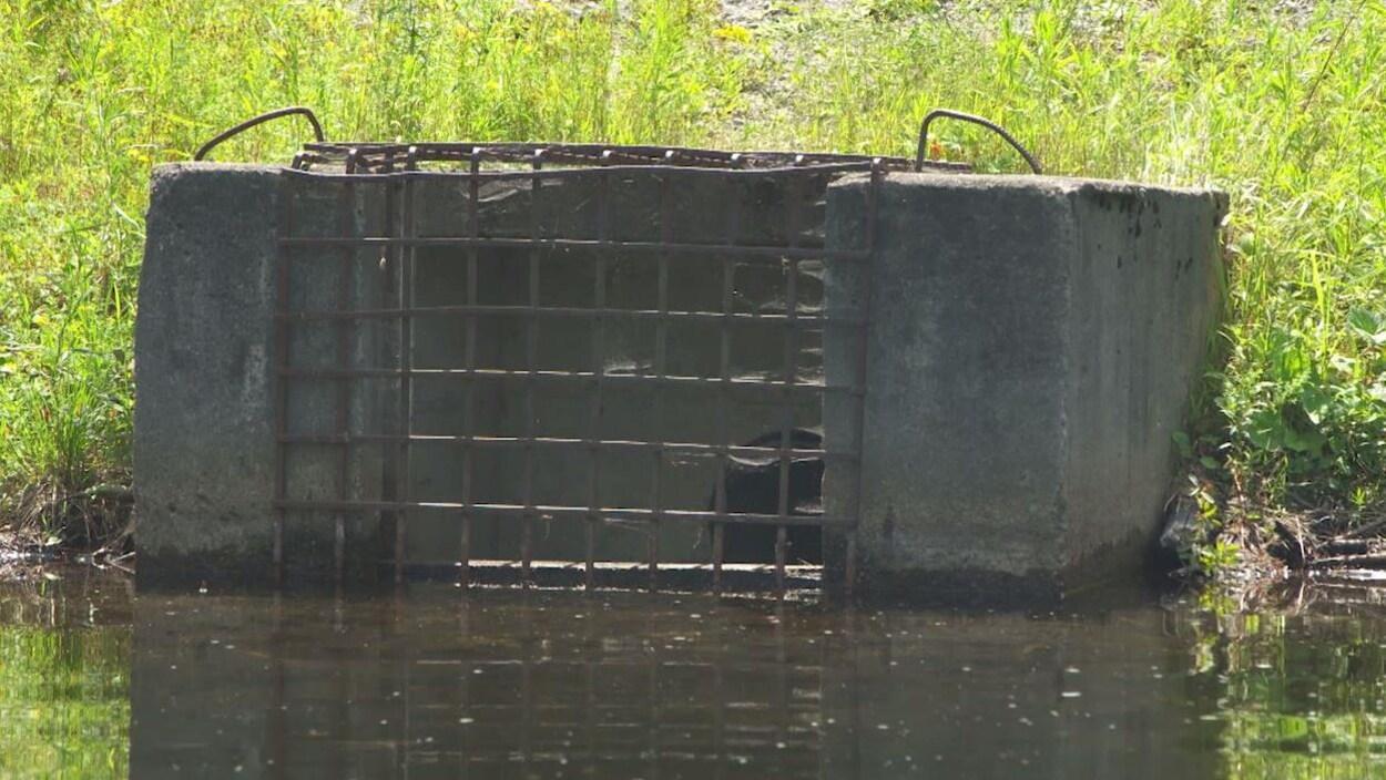 Rehausser Une Cloture Grillagée découvrir qu'on possède un barrage et crouler sous les