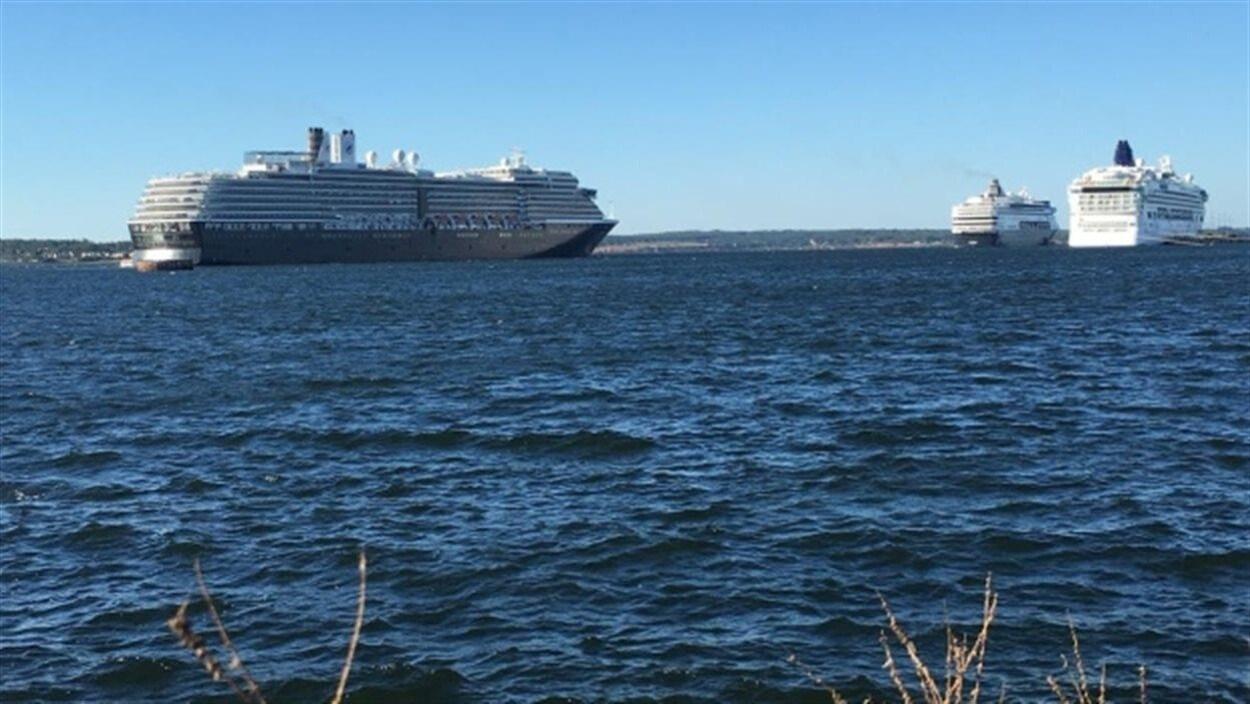 Des bateaux de croisière dans le port de Charlottetown, à l'Île-du-Prince-Édouard