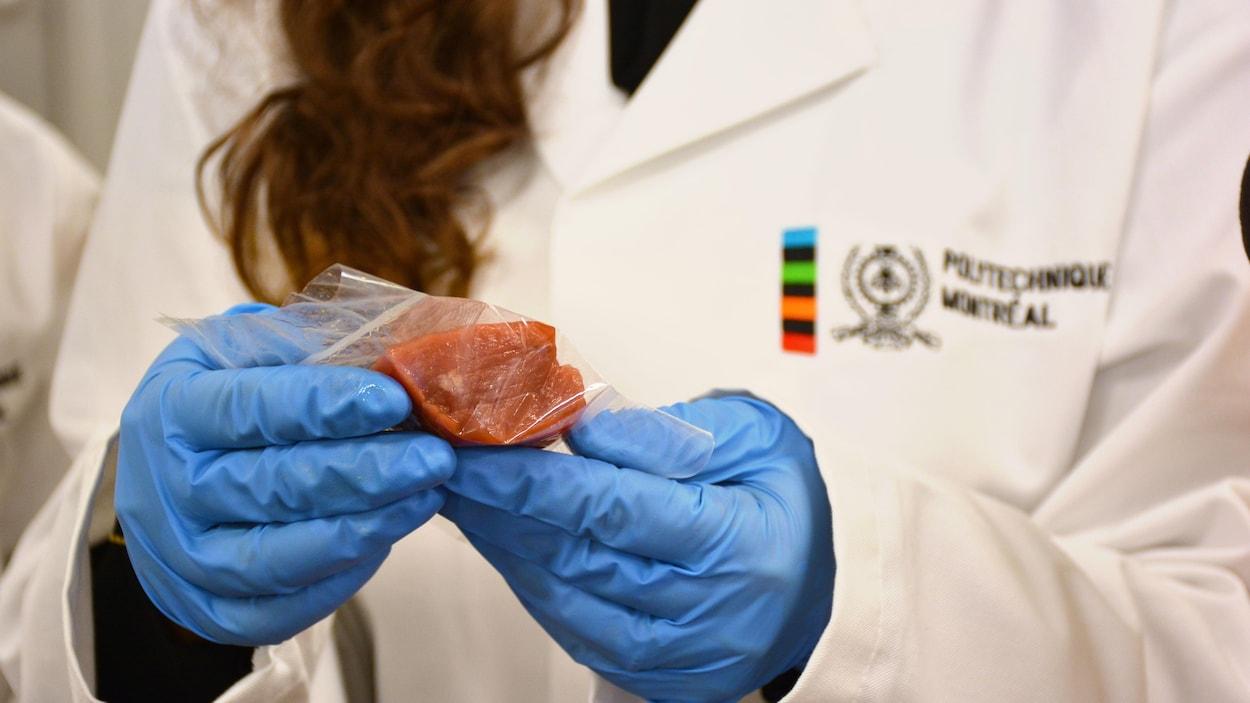 Le bioplastique produit dans un laboratoire de Polytechnique