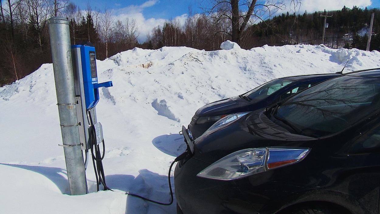 Une voiture électrique branchée à une borne de recharge.