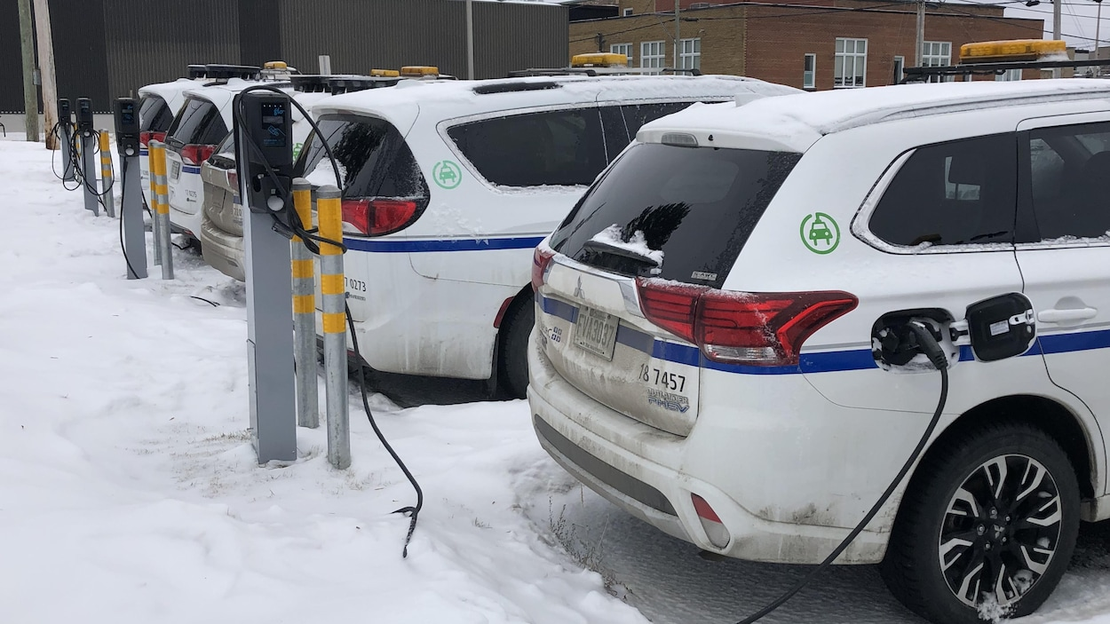 Des voitures électriques sont garées à proximité de bornes de recharge.