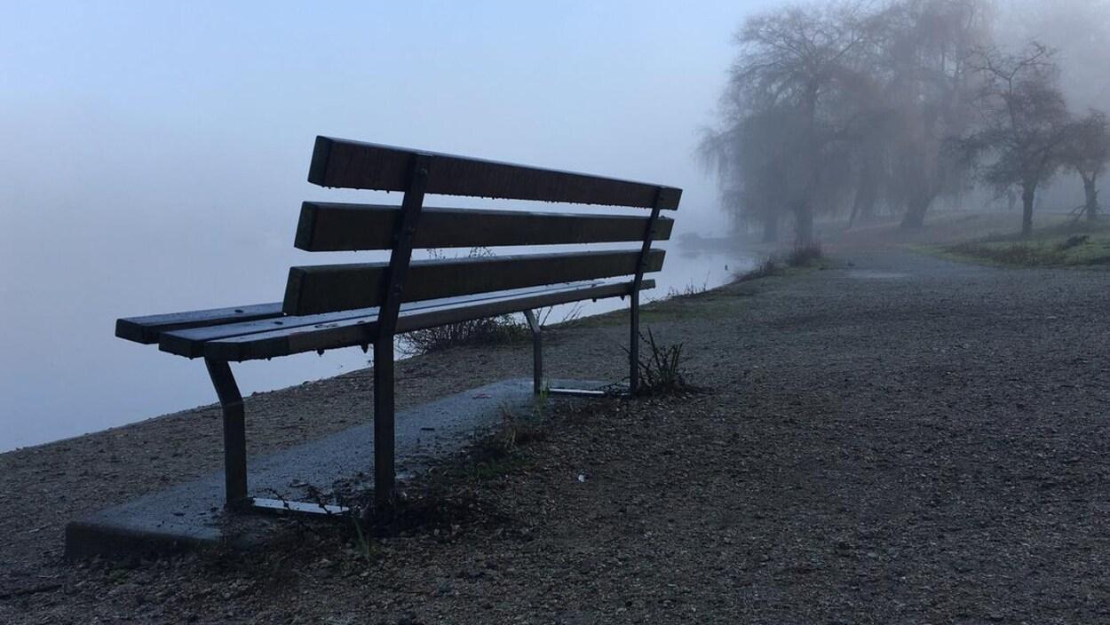 Du brouillard, un sentier et un banc en bois au bord d'un petit lac du parc Stanley, à Vancouver.