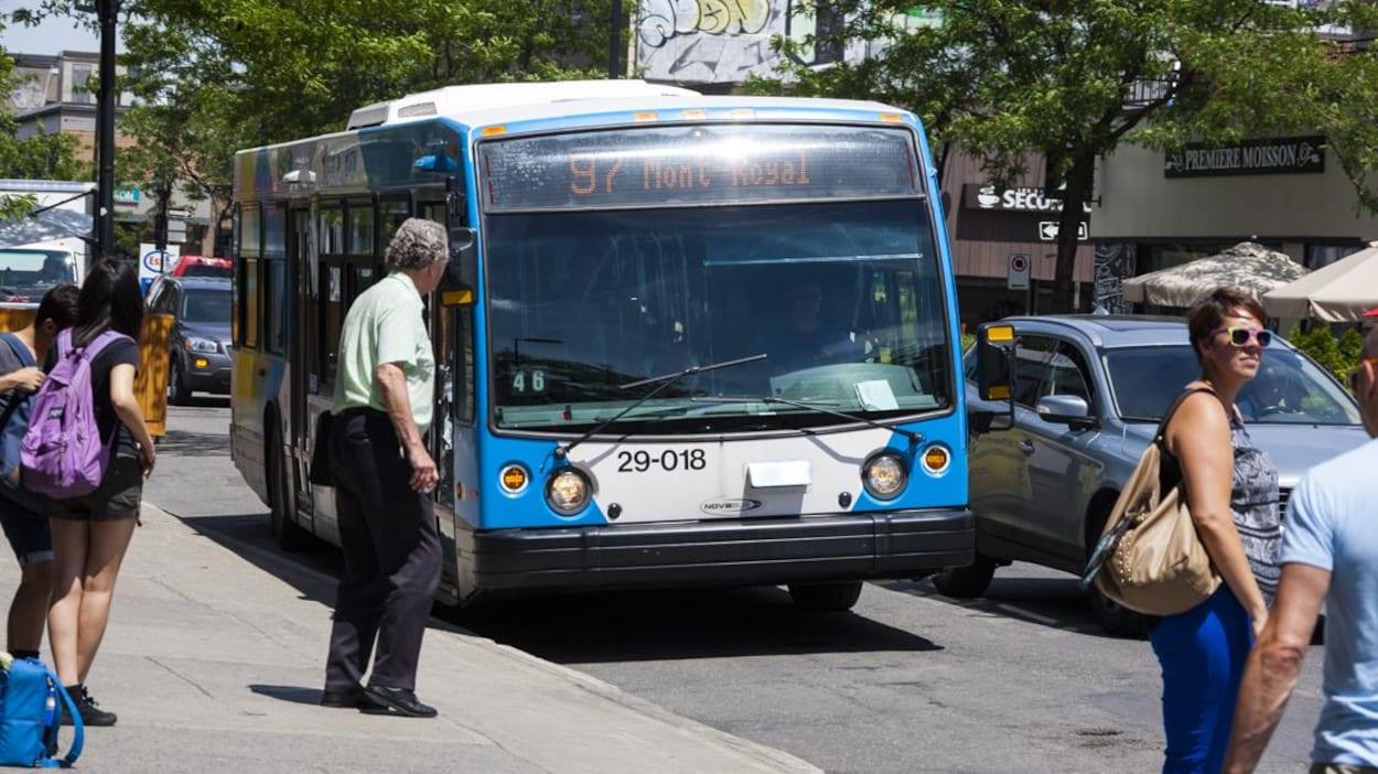 Une autobus de la STM circule sur l'avenue Mont-Royal à Montréal, en été.