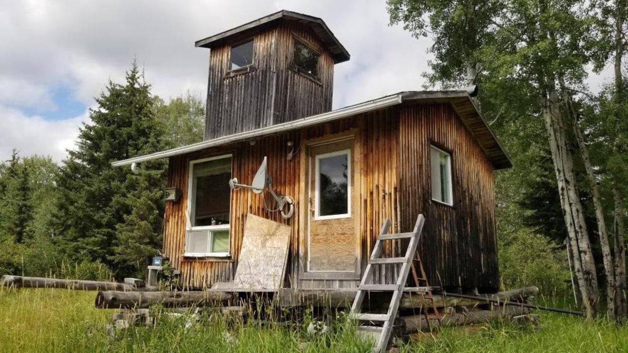 Une petite maison de bois avec une antenne satellite dans une clairière.