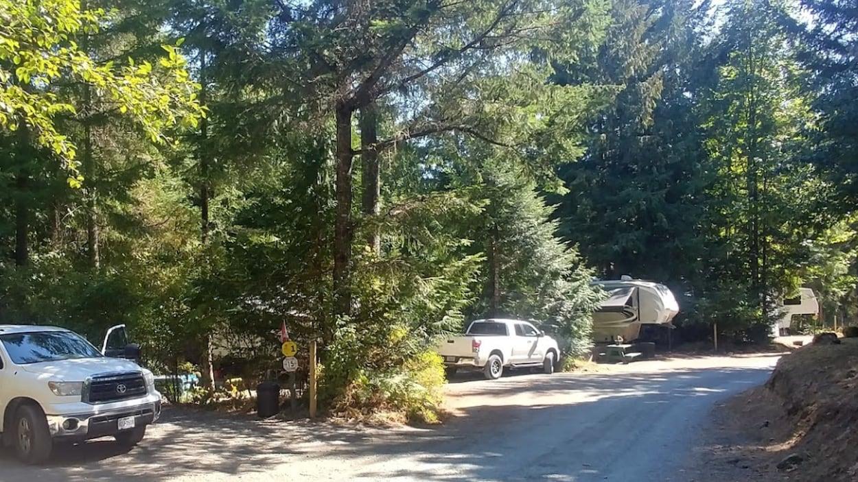 Des camionnettes et des caravanes sont garées sur des emplacements de camping sous les arbres.
