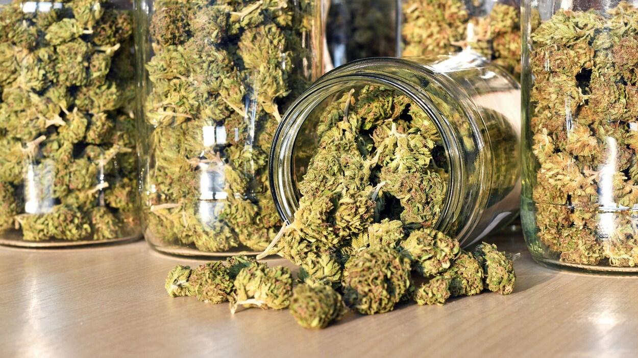 Cannabis dans un pot en verre.