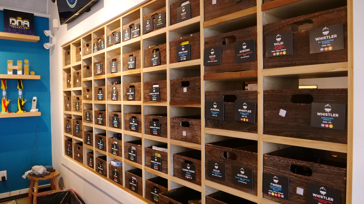 Des armoires contenant diverses sortes de cannabis.