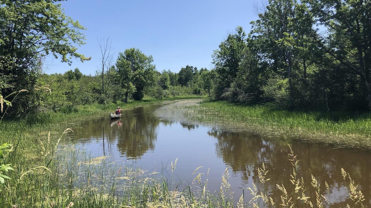 M. Toussaint se déplace en canot dans le cours d'eau.