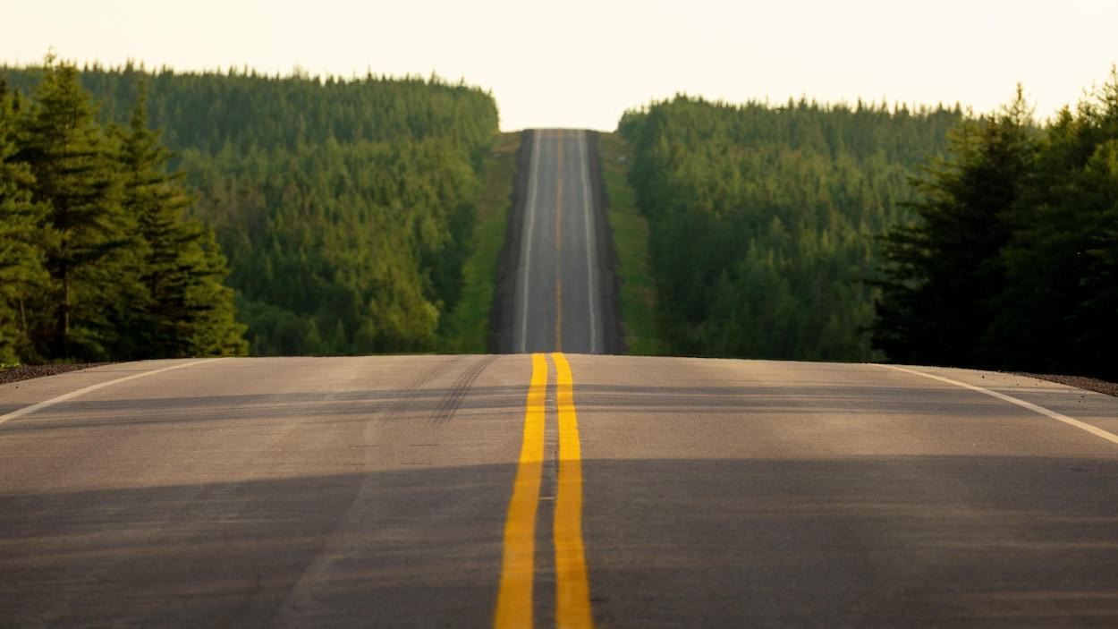Une route rurale au Cap-Breton.
