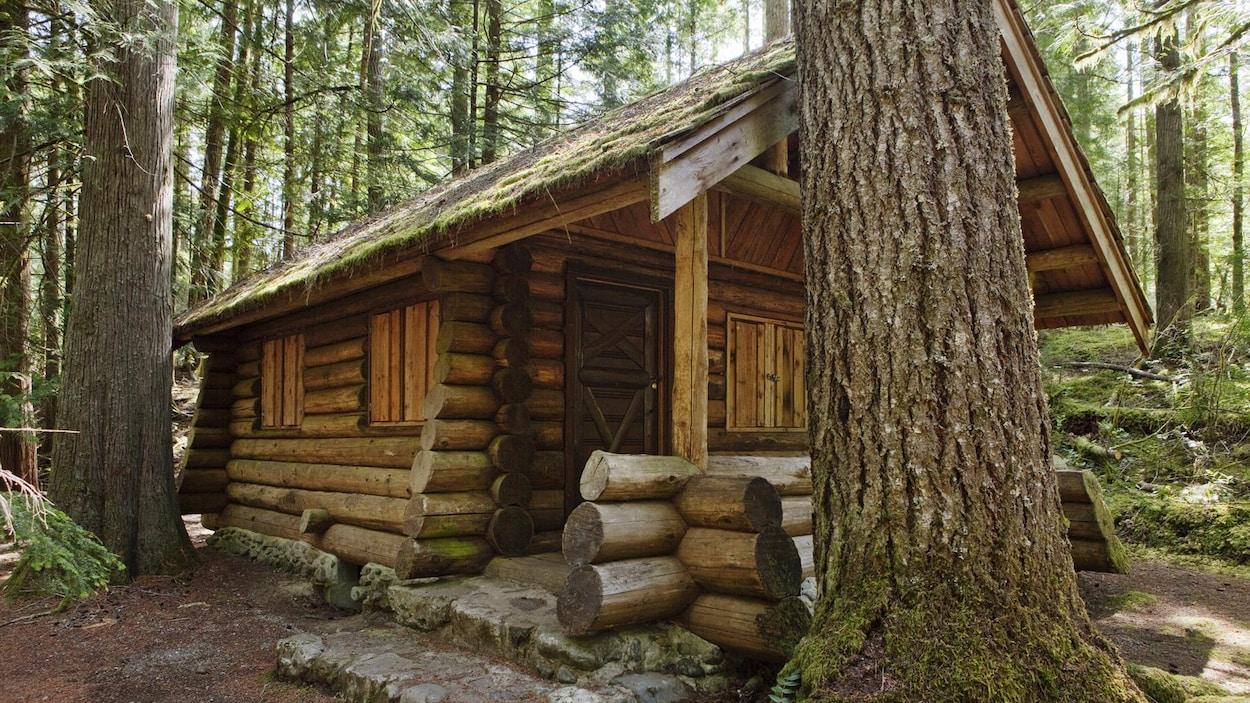 Un petit chalet en bois dans la forêt.