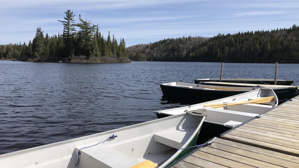 Des chaloupes attachées à un quai sur un lac.
