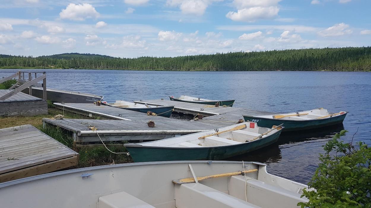 Des chaloupes sont amarrées à des pontons de bois sur un lac
