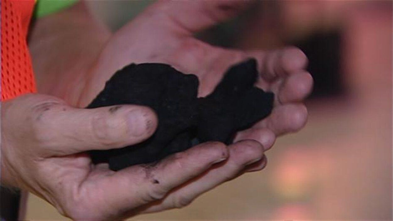 Gros plan sur des mains tenant du charbon.