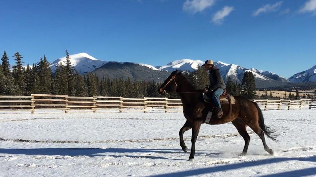 Un cavalier sur un cheval.