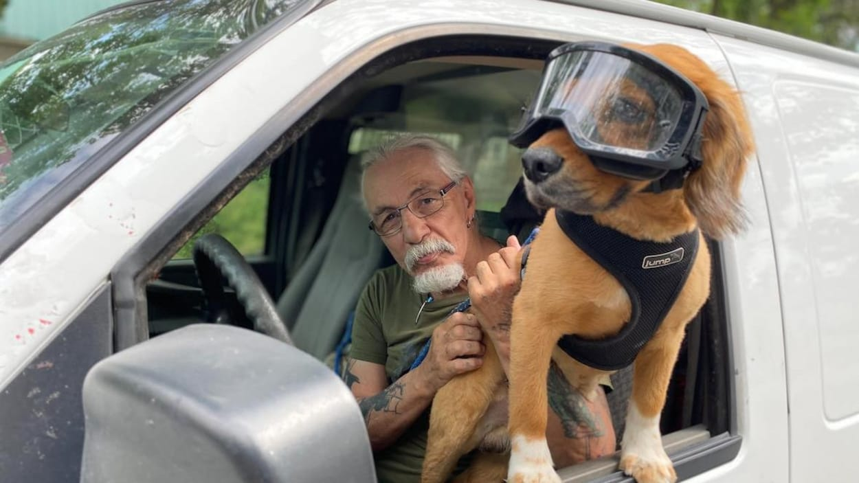 Un chien portant des lunettes de protection sort sa tête d'un véhicule blanc. On aperçoit le maître du chien en arrière-plan.