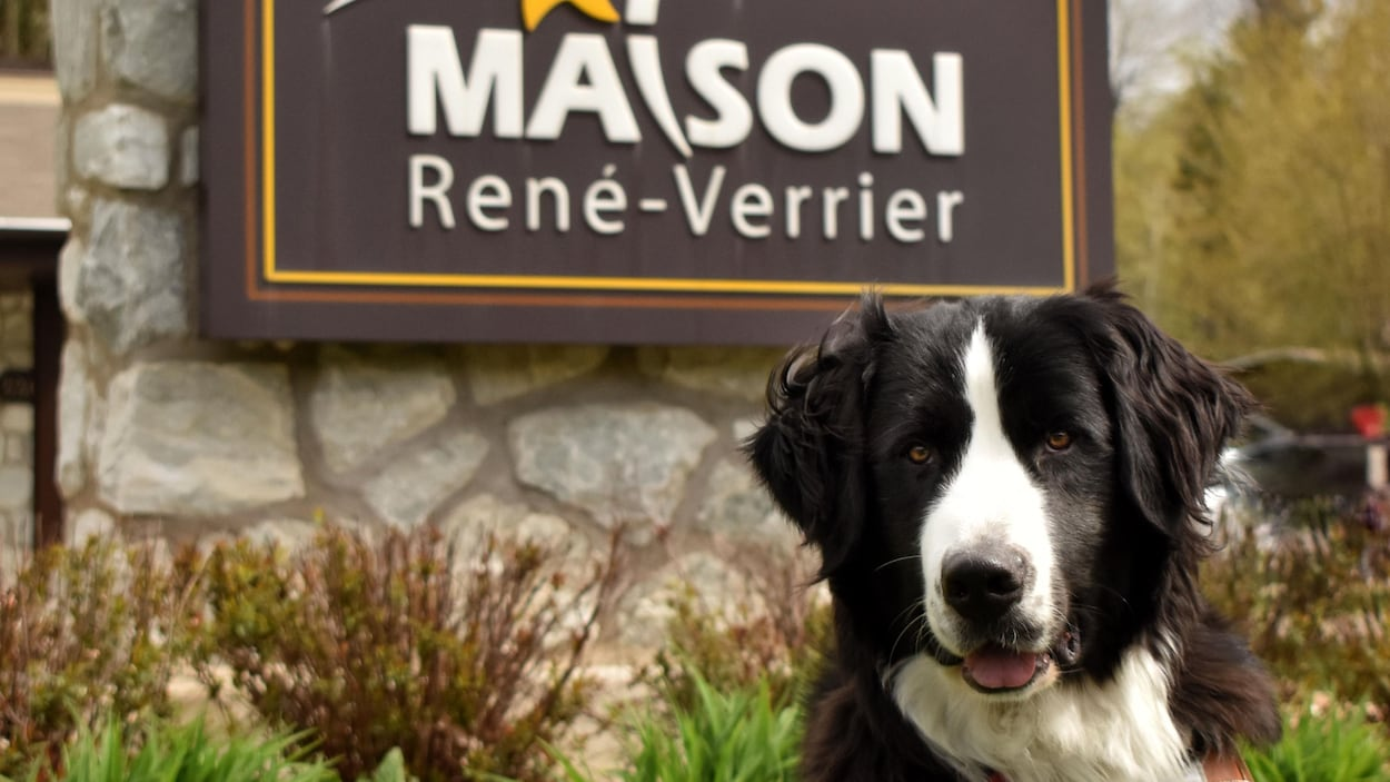 Un labernois assis devant l'enseigne de la Maison René-Verrier.