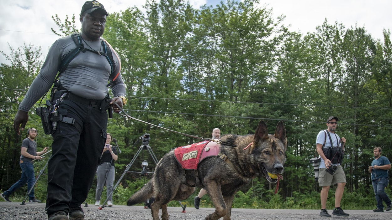 Un policier tient un chien en laisse.