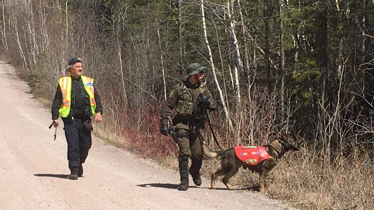 Un agent tient un chien en laisse près d'un boisé.