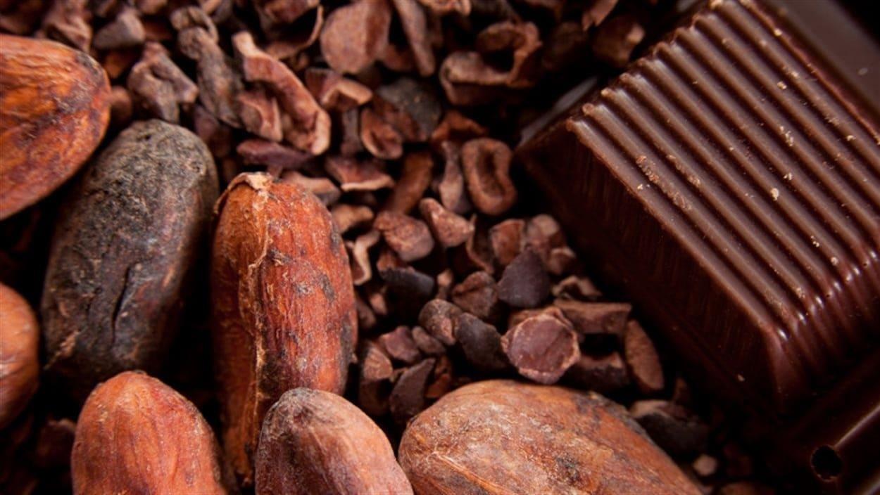 Des fèves de cacao et un carré de chocolat.