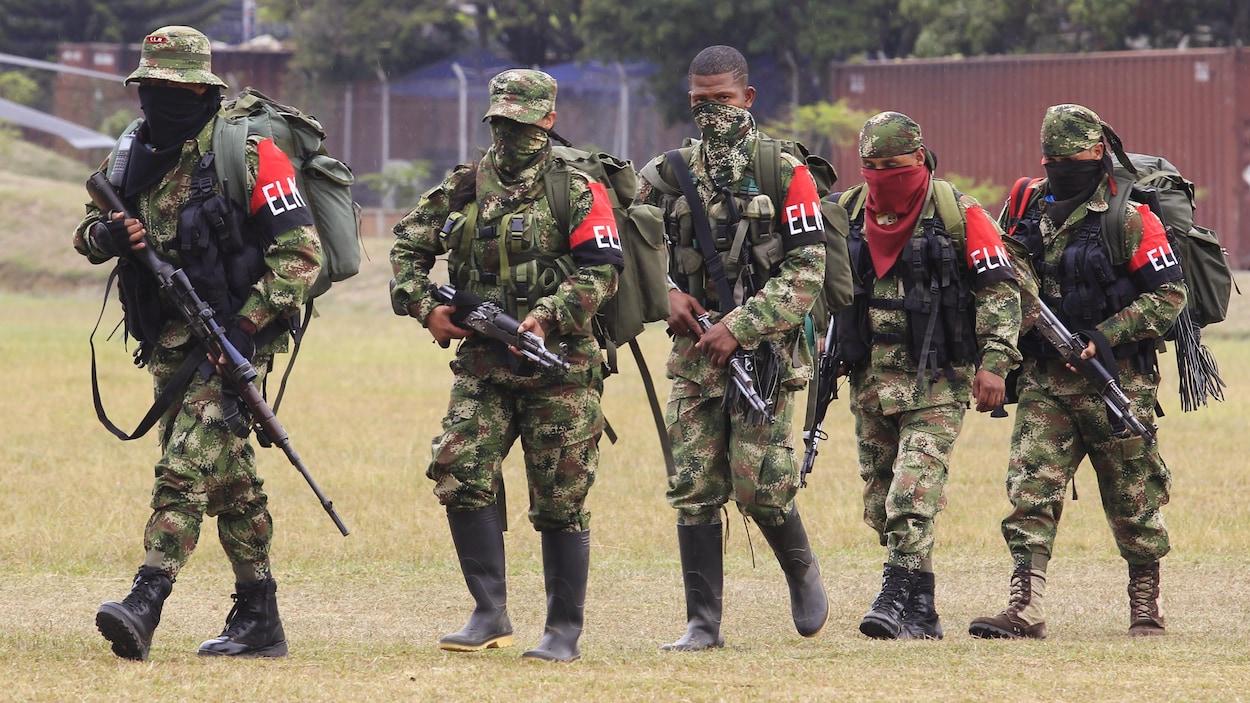Des membres du  groupe de guérilla colombien ELN se rendant à une base militaire pour se rendre et remettre leurs armes, à Cali le 16 juillet 2013.