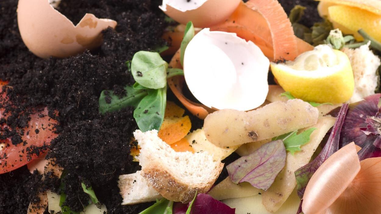 Un ensemble de déchet servant à faire du compost.
