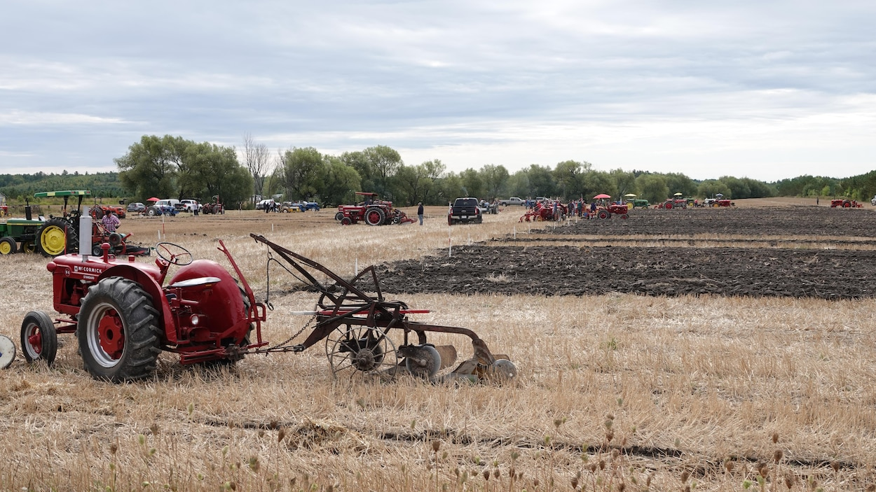 Des tracteurs munis de charrues dans un champ partiellement labouré.