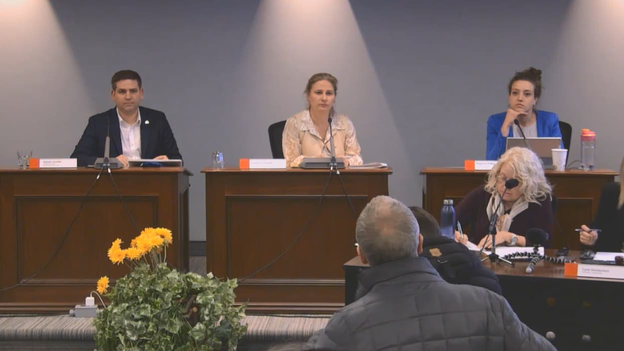 La séance du conseil d'arrondissement.