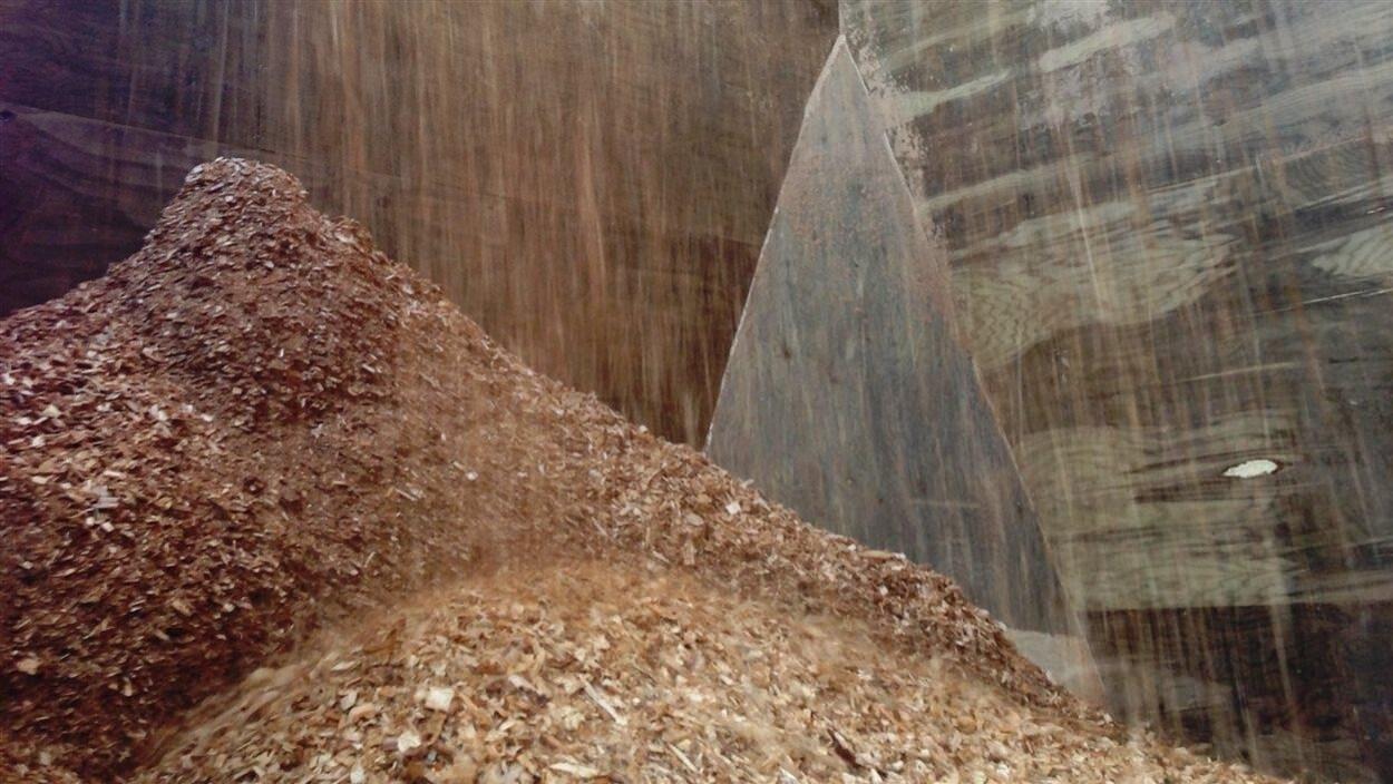 Les producteurs de bois accueillent positivement le nouvel acqu reur de tembec ici radio - Copeaux de bois colores ...