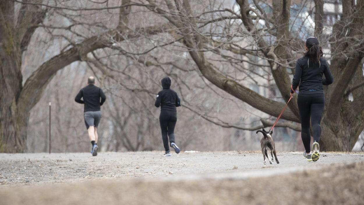 Des personnes font de la course à pied dans un parc.