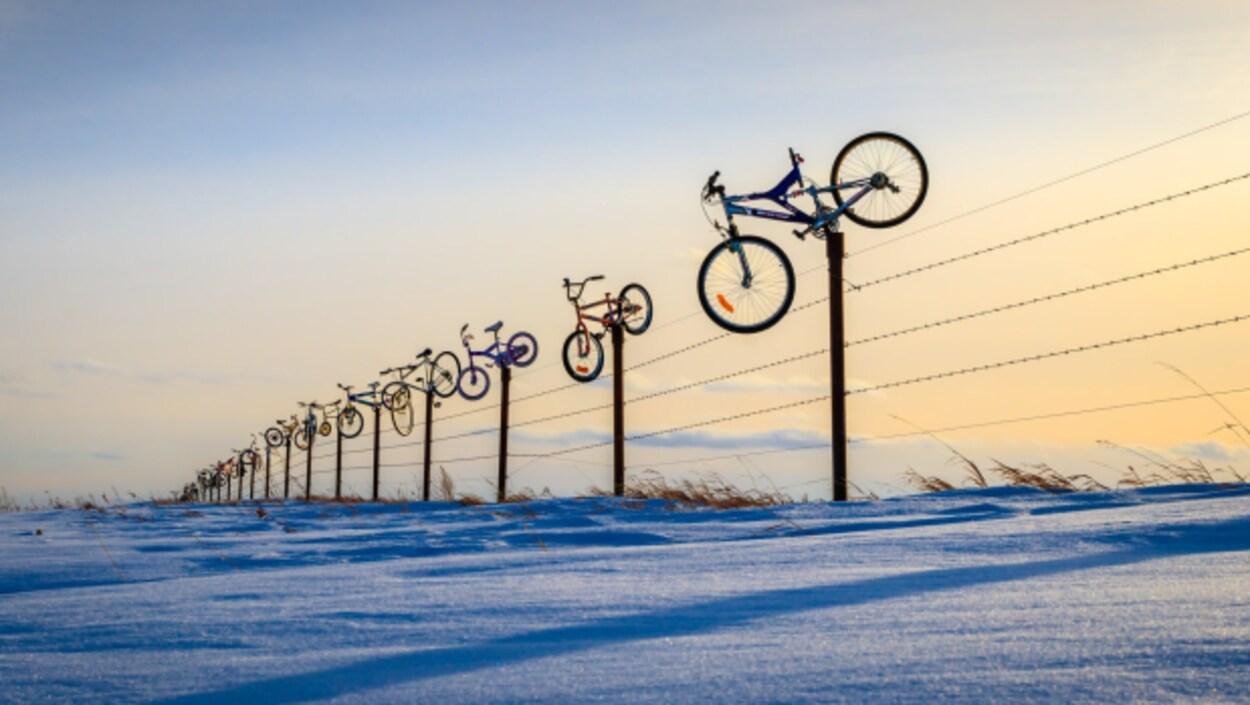 La clôture de la ferme de Darren Ireland avec des dizaines de vélos installés sur ses piquets.