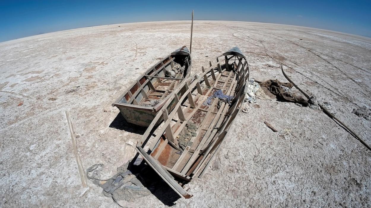 Carcasse de deux bateaux de bois abandonnés