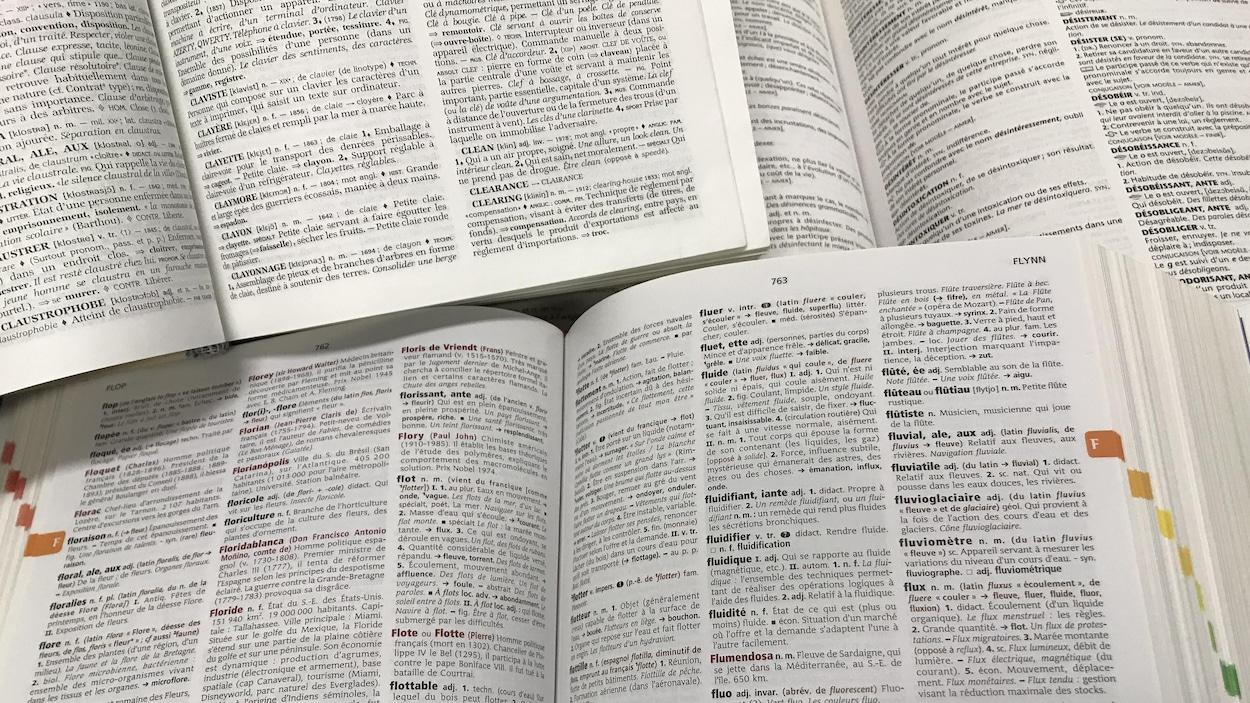 Des dictionnaires