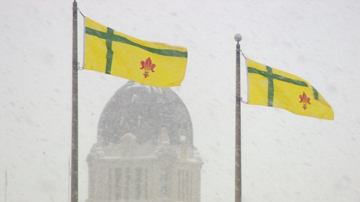 Deux drapeaux flottent dans le vent et la neige. En arrière-plan, on aperçoit le dôme du Palais législatif.