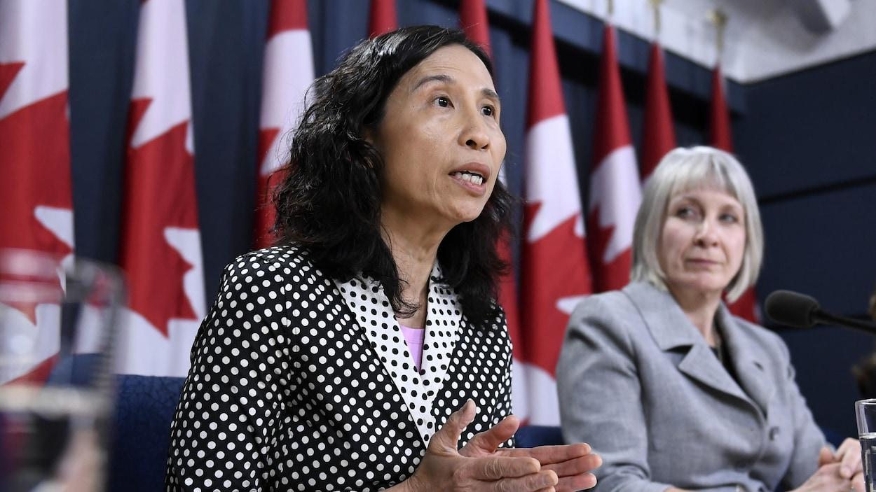 Dre Theresa Tam et la ministre Patty Hajdu s'adressent aux médias devant des drapeaux du Canada.