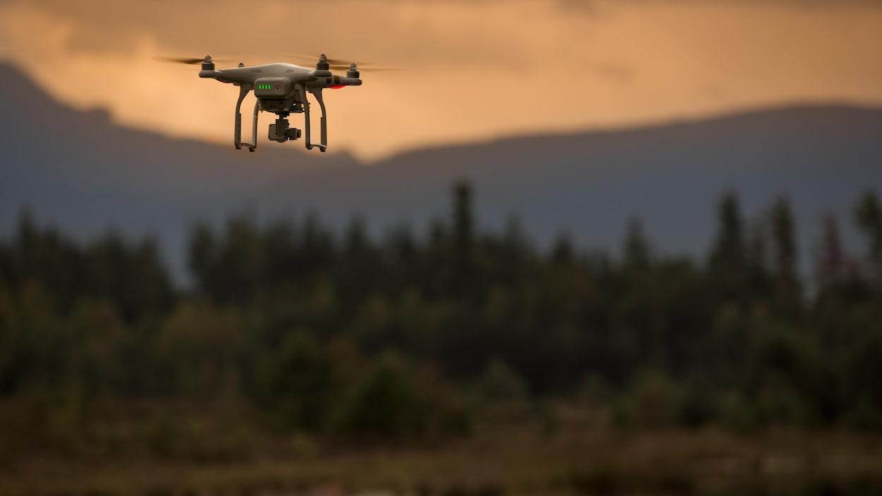 Un drone survole une forêt.
