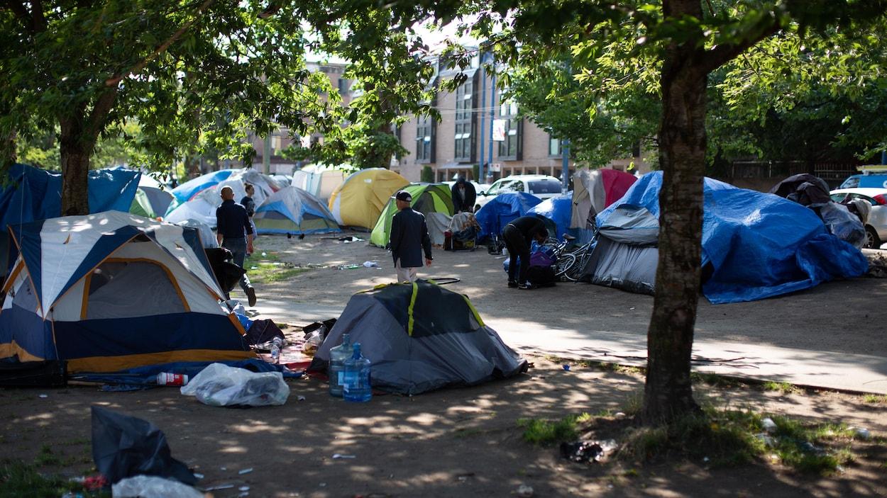 Plan serré de plusieurs dizaines de tentes érigées dans un parc.