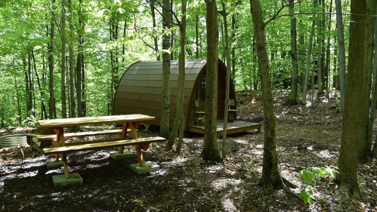 Un écogîte dans la forêt.