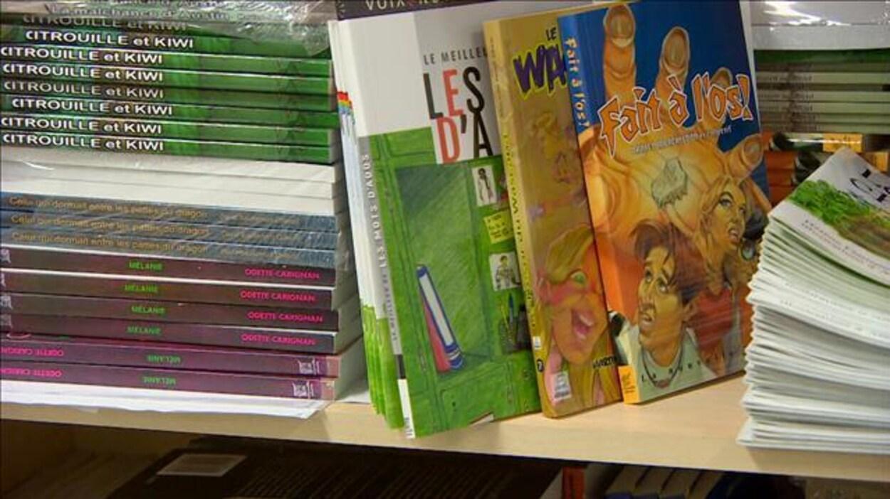 Sur une étagère reposent différents livres pour enfants.