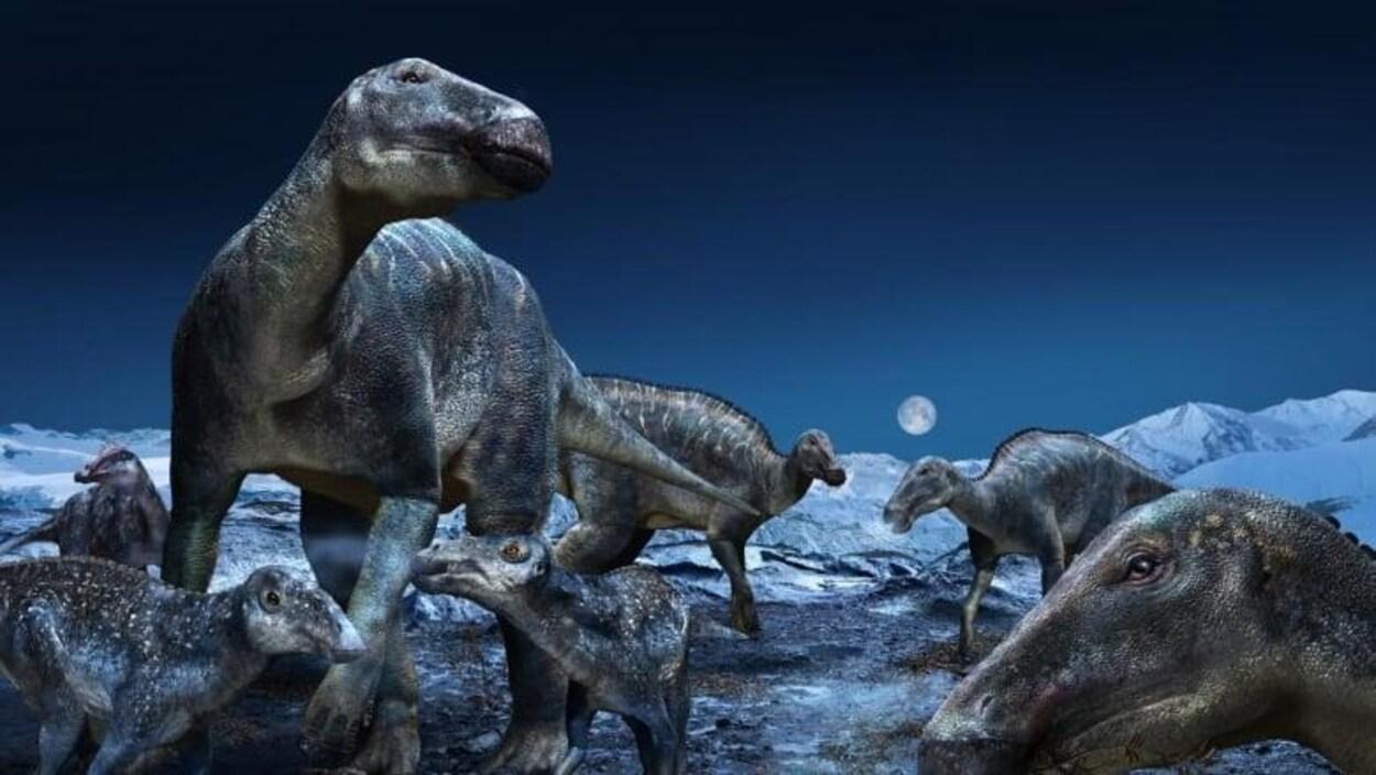 Une illustration de l'Edmontosaurus, une espèce de dinosaures à bec de canard.