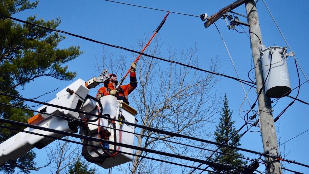 Un travailleur d'Énergie NB, dans une nacelle, tente de dégager une ligne électrique.