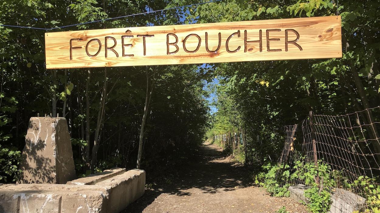 L'entrée d'un chemin qui mène à la forêt.