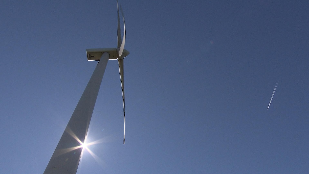 Les pales d'une éolienne, vues de sa base.