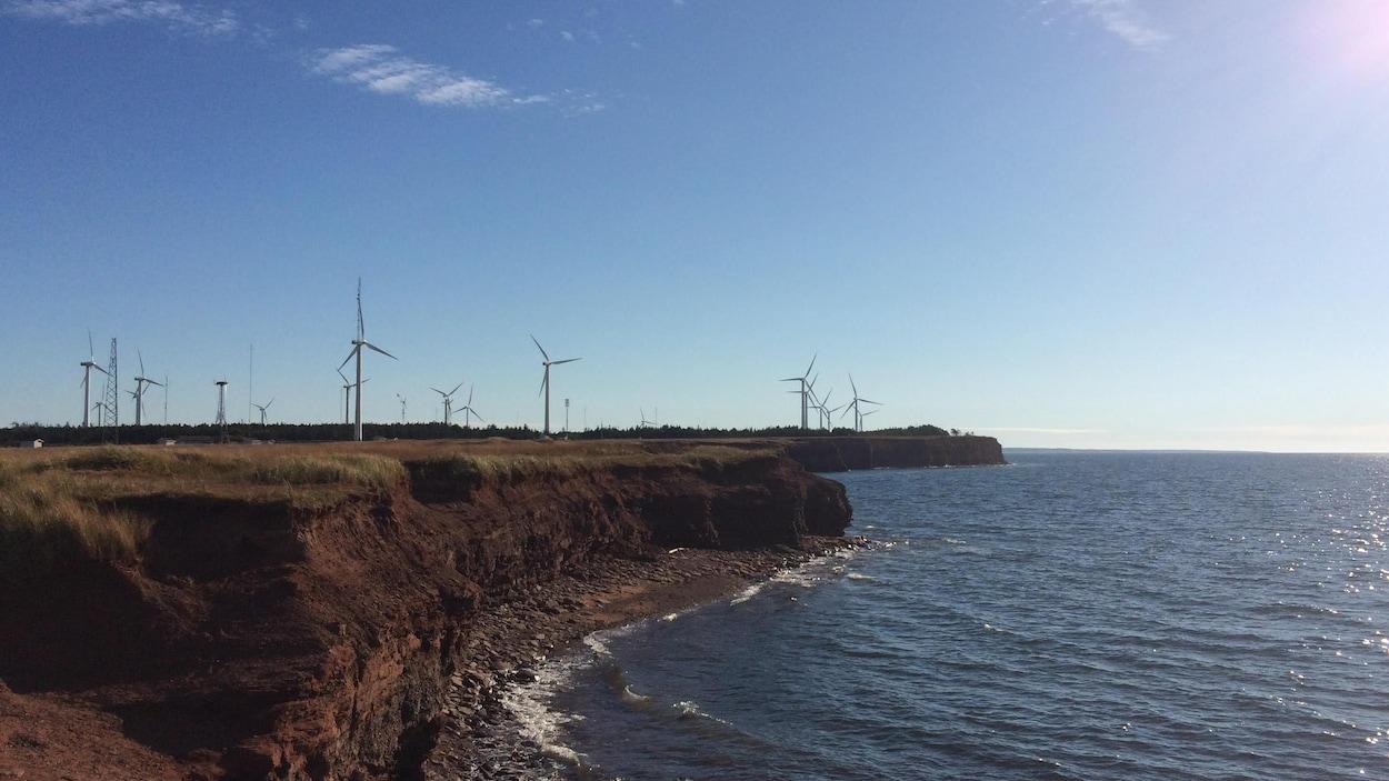 Des éoliennes à North Cape, près de Tignish, à l'Île-du-Prince-Édouard.