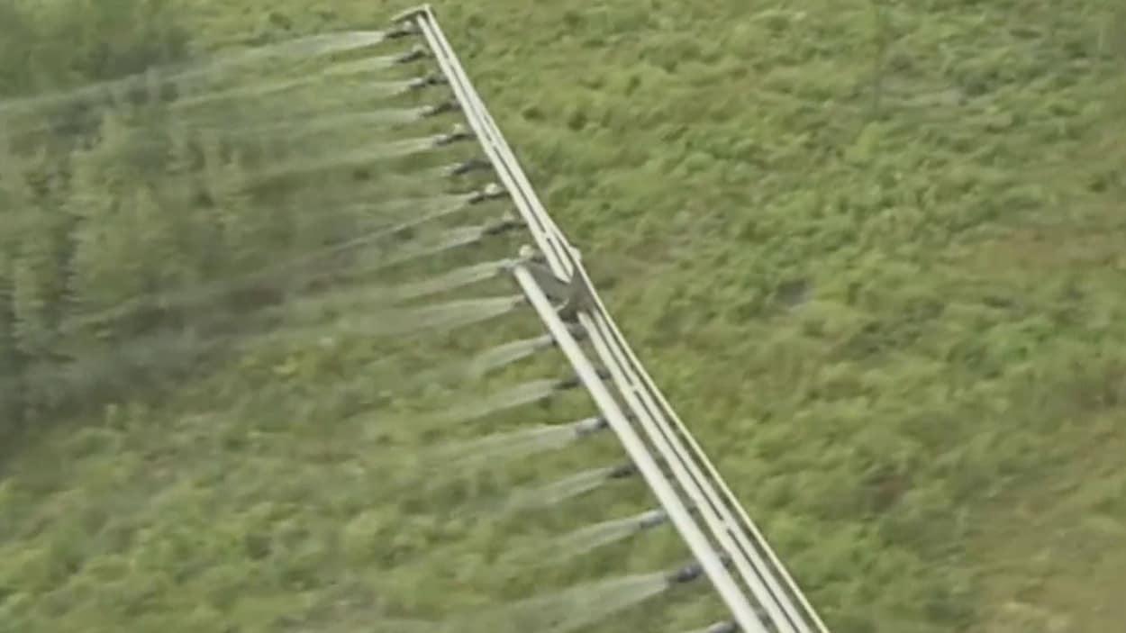 Un hélicoptère pulvérise un produit chimique sur une forêt.