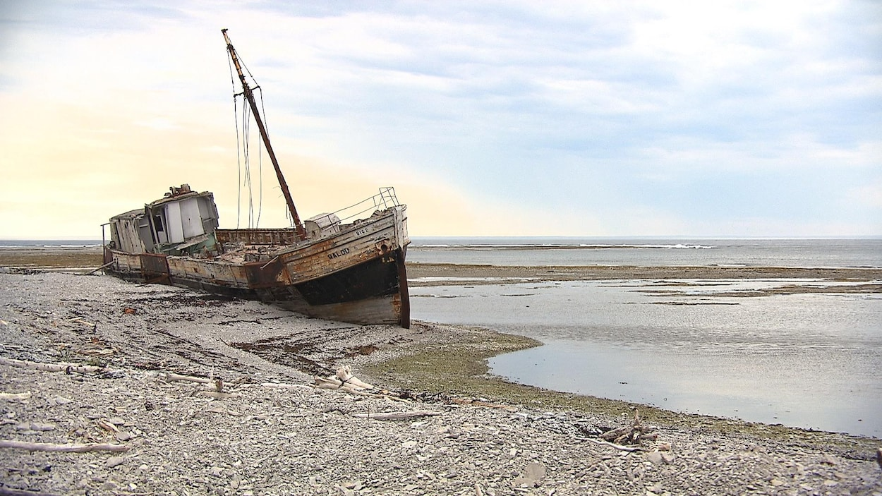 Une épave échouée sur l'île d'Anticosti.