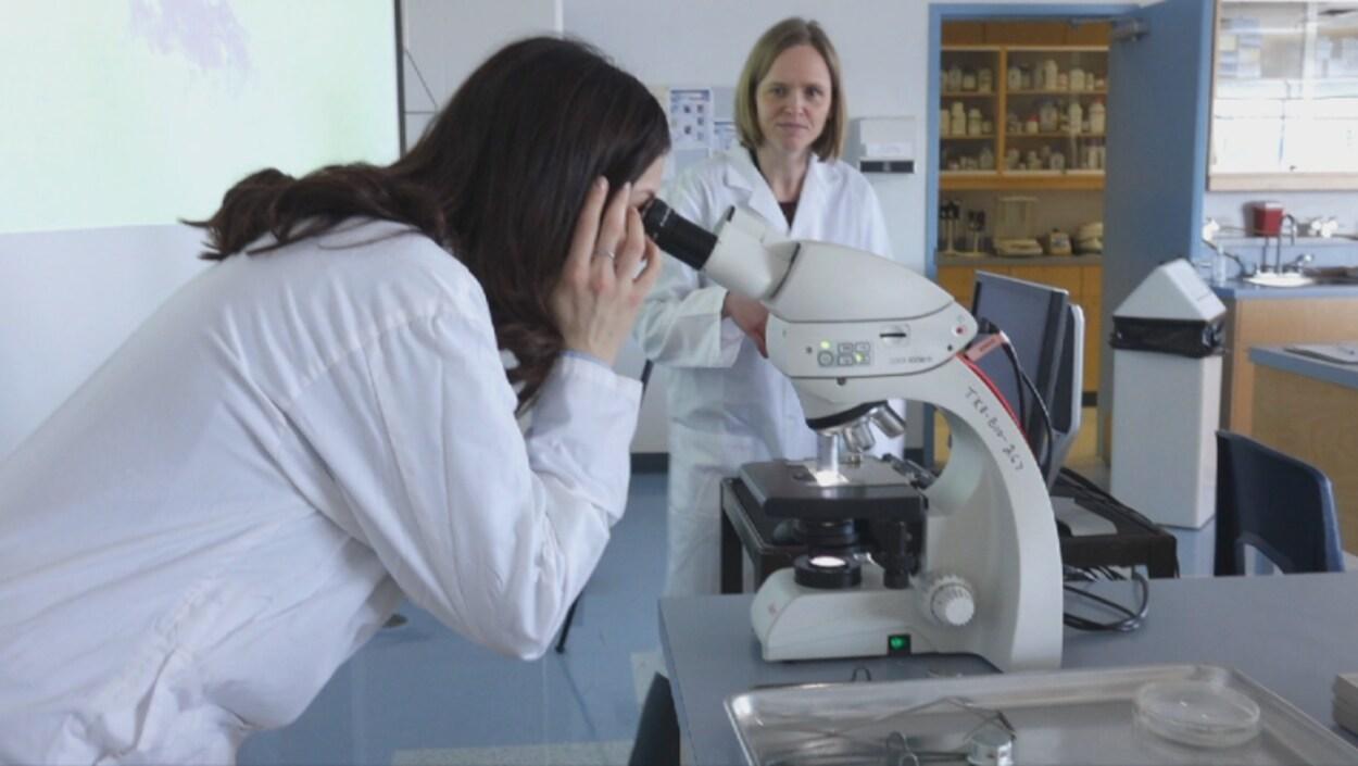 Une femme regarde dans un microscope.