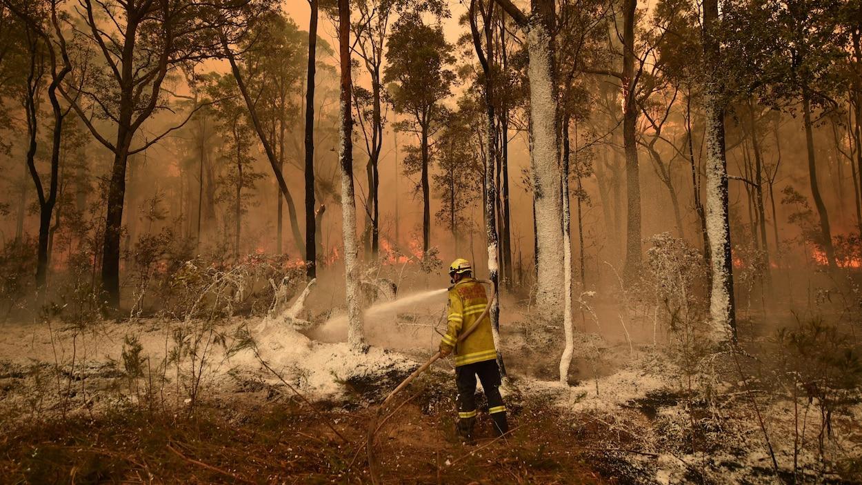Un pompier seul dans une forêt en feu.