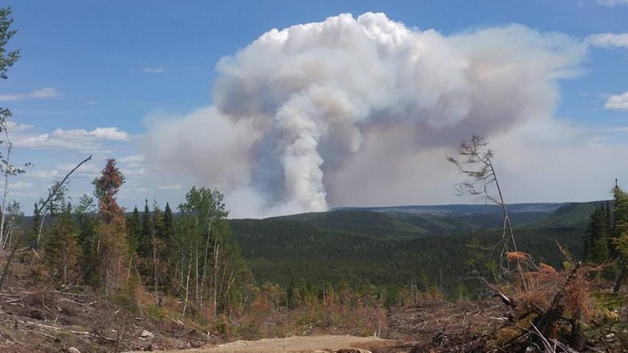 Une photo du feu de forêt prise mardi