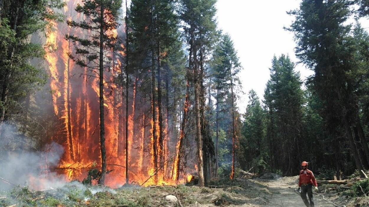 Un pompier combat un feu de forêt en Colombie-Britannique